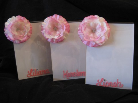 Picture frame 5x7 Lucite Light Pink Flower Bling