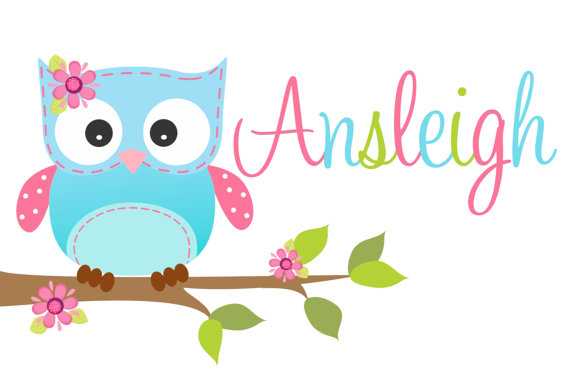 Personalized Pillowcase Blue Owl